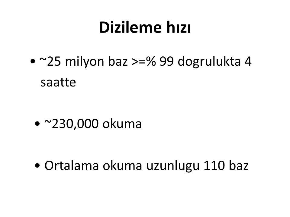 Dizileme hızı ~25 milyon baz >=% 99 dogrulukta 4 saatte ~230,000 okuma Ortalama okuma uzunlugu 110 baz