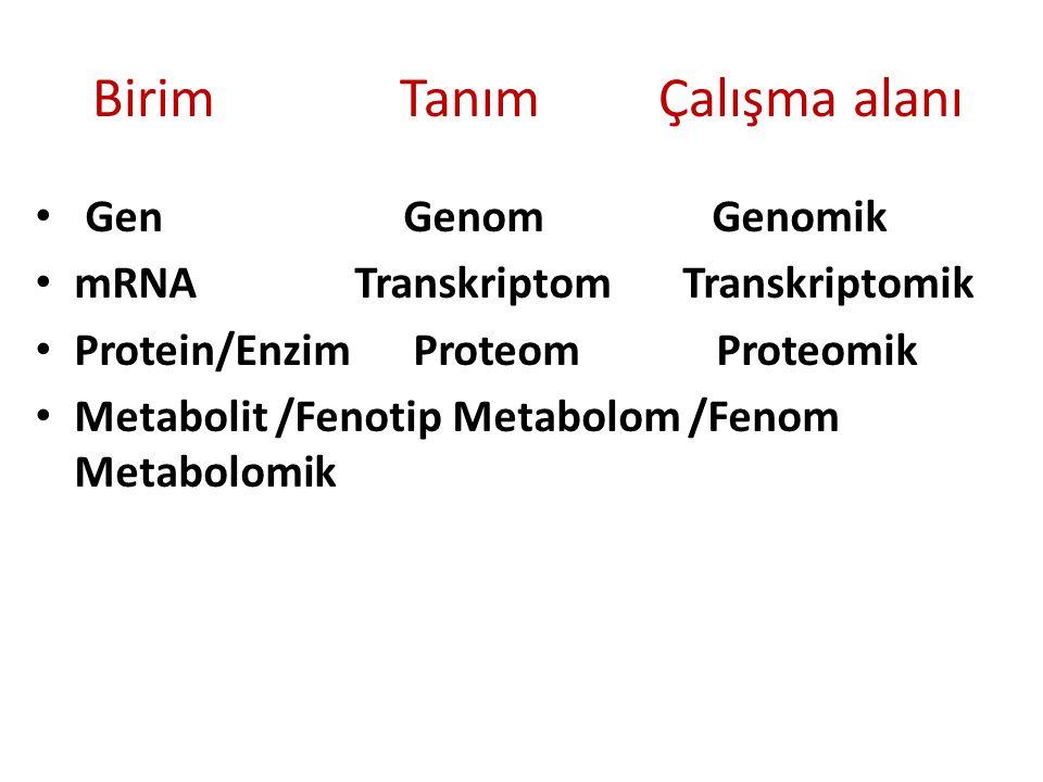 İşlevsel Genomik Nedir.