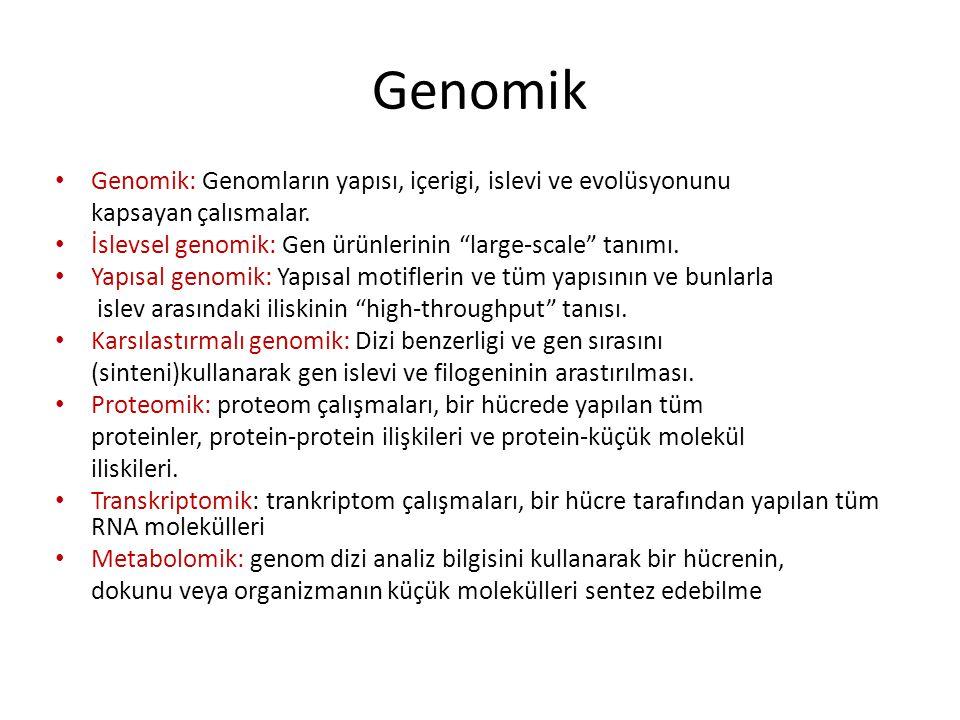 """Genomik Genomik: Genomların yapısı, içerigi, islevi ve evolüsyonunu kapsayan çalısmalar. İslevsel genomik: Gen ürünlerinin """"large-scale"""" tanımı. Yapıs"""