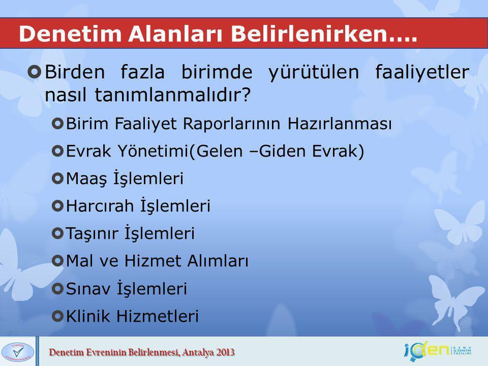 Denetim Evreninin Belirlenmesi, Antalya 2013 Denetim Alanları Belirlenirken….  Birden fazla birimde yürütülen faaliyetler nasıl tanımlanmalıdır?  Bi