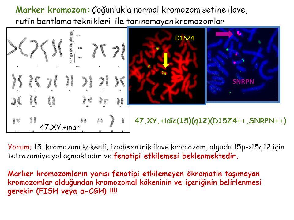 47,XY,+mar Marker kromozom: Çoğunlukla normal kromozom setine ilave, rutin bantlama teknikleri ile tanınamayan kromozomlar 47,XY,+mar 47,XY,+idic(15)(q12)(D15Z4++,SNRPN++) Yorum; 15.