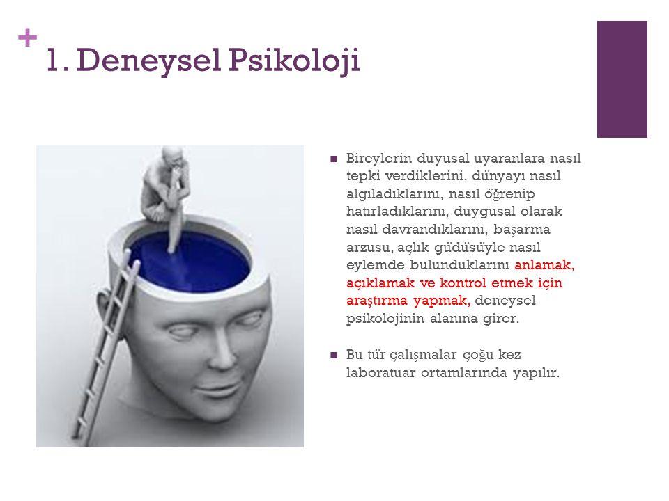+ 1. Deneysel Psikoloji Bireylerin duyusal uyaranlara nasıl tepki verdiklerini, du ̈ nyayı nasıl algıladıklarını, nasıl o ̈ ğ renip hatırladıklarını,