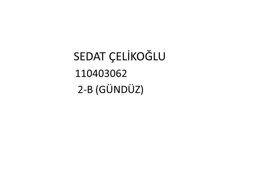 SEDAT ÇELİKOĞLU 110403062 2-B (GÜNDÜZ)