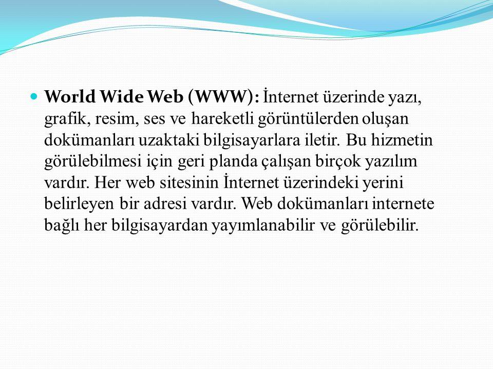 World Wide Web (WWW): İnternet üzerinde yazı, grafik, resim, ses ve hareketli görüntülerden oluşan dokümanları uzaktaki bilgisayarlara iletir.