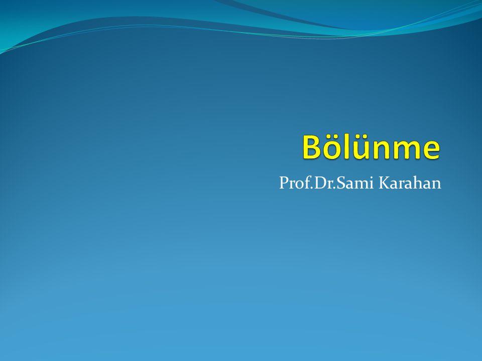 Prof.Dr.Sami Karahan