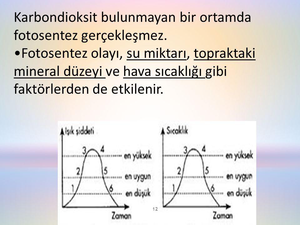 Karbondioksit bulunmayan bir ortamda fotosentez gerçekleşmez.
