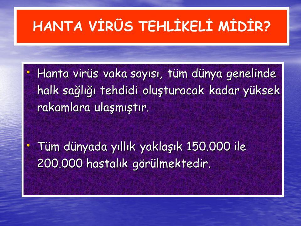 HANTA VİRÜS TEHLİKELİ MİDİR? Hanta virüs vaka sayısı, tüm dünya genelinde halk sağlığı tehdidi oluşturacak kadar yüksek rakamlara ulaşmıştır. Tüm düny