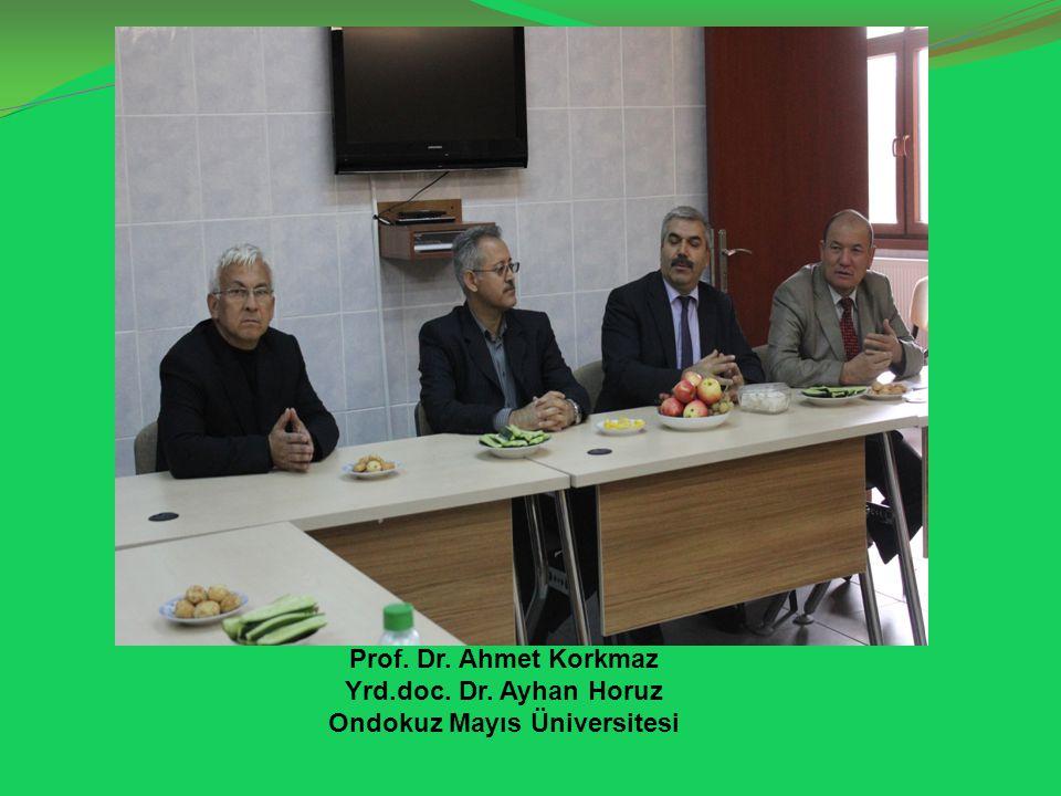 Prof. Dr. Ahmet Korkmaz Yrd.doc. Dr. Ayhan Horuz Ondokuz Mayıs Üniversitesi