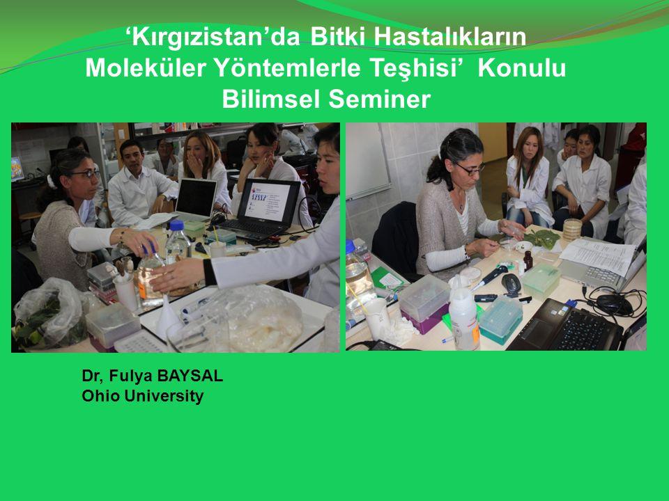 'Kırgızistan'da Bitki Hastalıkların Moleküler Yöntemlerle Teşhisi' Konulu Bilimsel Seminer Dr, Fulya BAYSAL Ohio University