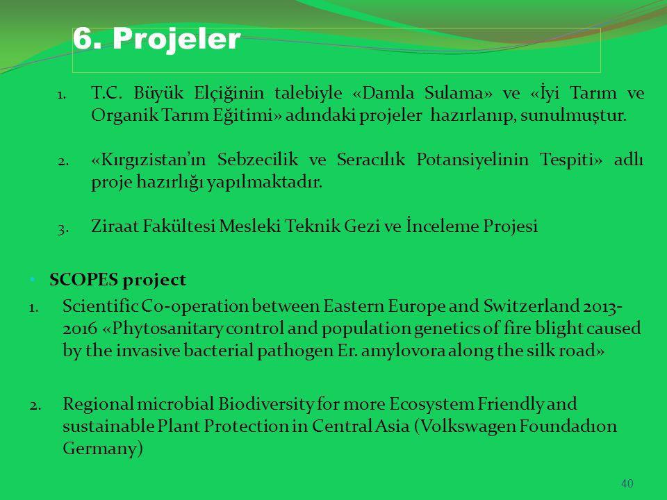 6.Projeler 1. T.C.