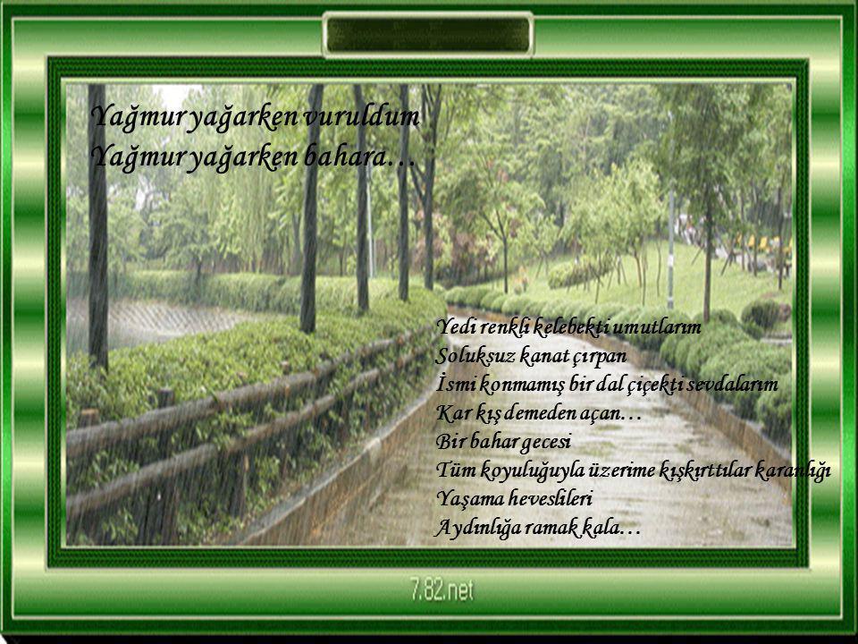 Şiir, Ali YAŞAR 'ın DELİ IRMAK isimli kitabından alınmıştır… Ali YAŞAR Lütfen slaytı sesli ve kendi akışında izleyiniz.
