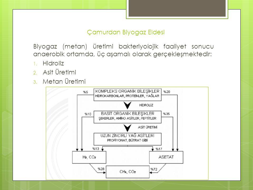 Çamurdan Biyogaz Eldesi Biyogaz (metan) üretimi bakteriyolojik faaliyet sonucu anaerobik ortamda, üç aşamalı olarak gerçekleşmektedir: 1. Hidroliz 2.