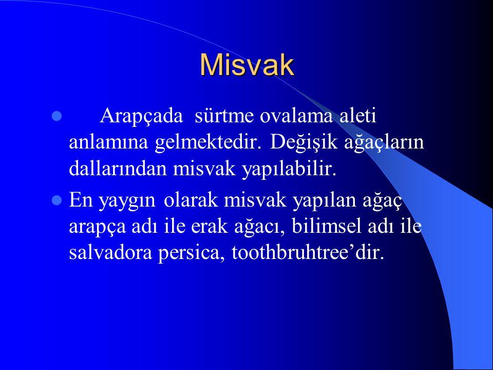 Misvak Erak ağacından elde edilen misvak, en kullanışlı ve en uygunu olduğu için genelde yaygın olarak kullanılan misvak türüdür.