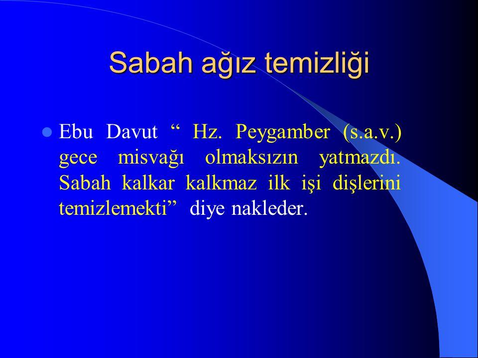 Sabah ağız temizliği Ebu Davut Hz.Peygamber (s.a.v.) gece misvağı olmaksızın yatmazdı.