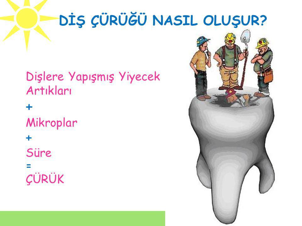 Dişlerin; Dış kısmı, Ağız boşluğuna bakan kısmı, Yemeklerin çiğnendiği üst tarafı fırçalanmalıdır.