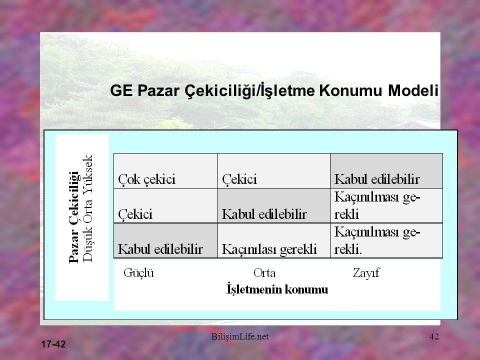 17-42 BilişimLife.net42 GE Pazar Çekiciliği/İşletme Konumu Modeli