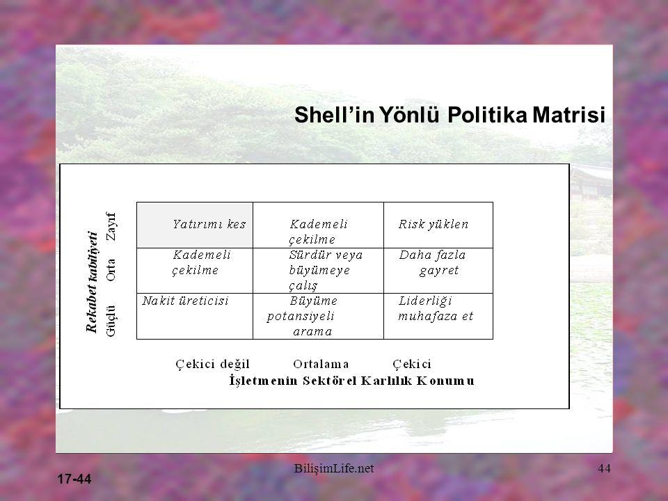 17-44 BilişimLife.net44 Shell'in Yönlü Politika Matrisi