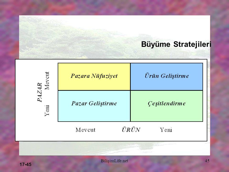17-45 BilişimLife.net45 Büyüme Stratejileri