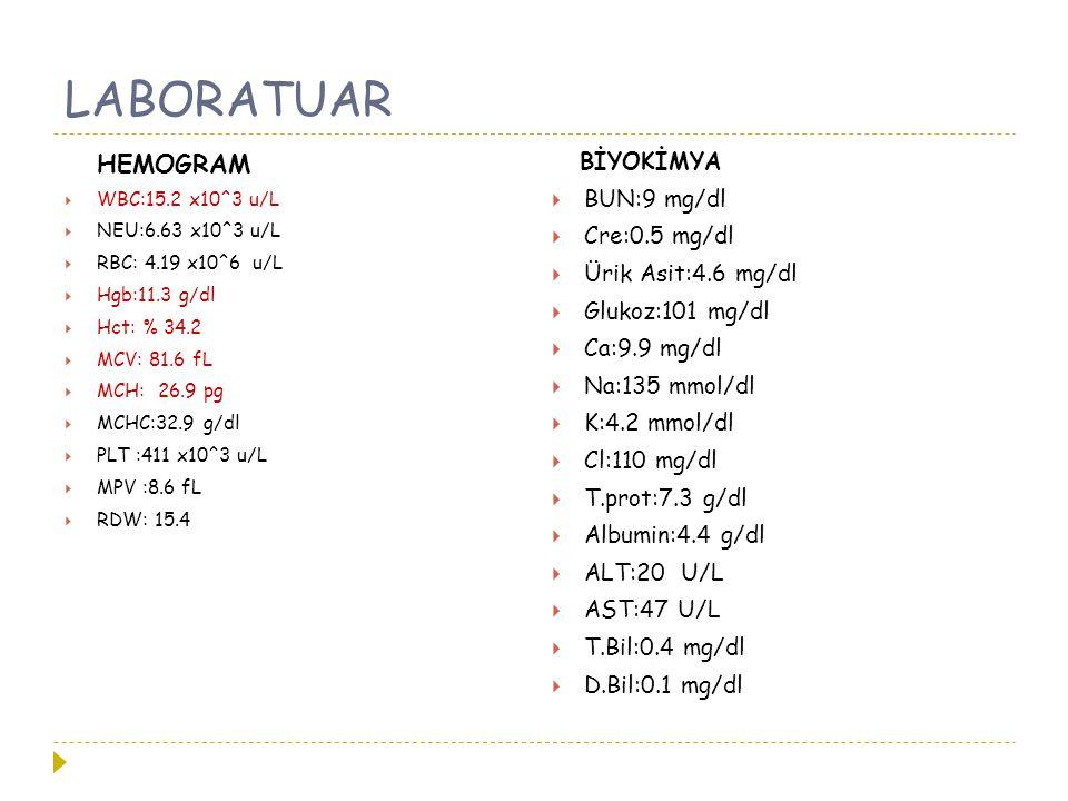 LABORATUAR HEMOGRAM  WBC:15.2 x10^3 u/L  NEU:6.63 x10^3 u/L  RBC: 4.19 x10^6 u/L  Hgb:11.3 g/dl  Hct: % 34.2  MCV: 81.6 fL  MCH: 26.9 pg  MCHC