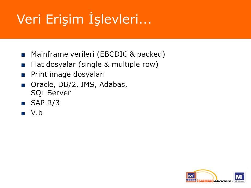 Mainframe verileri (EBCDIC & packed) Flat dosyalar (single & multiple row) Print image dosyaları Oracle, DB/2, IMS, Adabas, SQL Server SAP R/3 V.b Ver