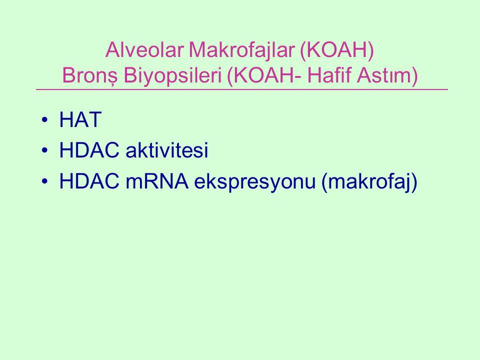 Alveolar Makrofajlar (KOAH) Bronş Biyopsileri (KOAH- Hafif Astım) HAT HDAC aktivitesi HDAC mRNA ekspresyonu (makrofaj)