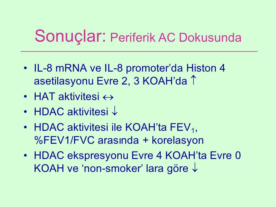 Sonuçlar: Periferik AC Dokusunda IL-8 mRNA ve IL-8 promoter'da Histon 4 asetilasyonu Evre 2, 3 KOAH'da  HAT aktivitesi  HDAC aktivitesi  HDAC aktiv