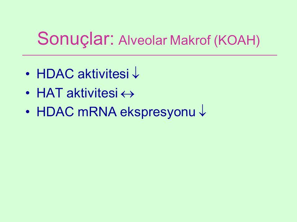 Sonuçlar: Alveolar Makrof (KOAH) HDAC aktivitesi  HAT aktivitesi  HDAC mRNA ekspresyonu 