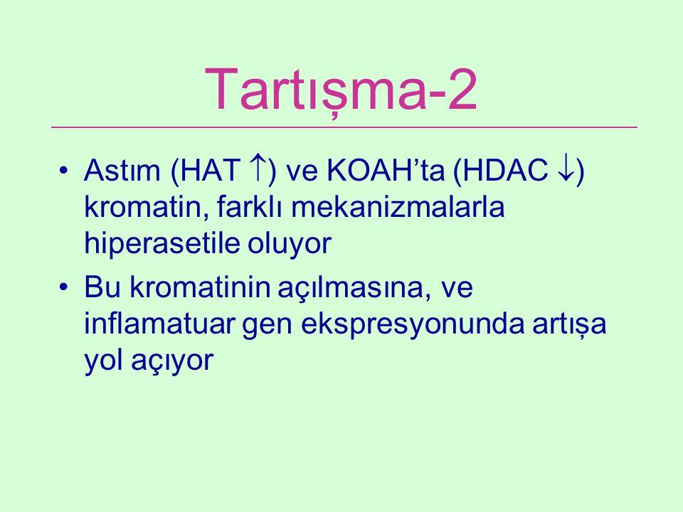 Tartışma-2 Astım (HAT  ) ve KOAH'ta (HDAC  ) kromatin, farklı mekanizmalarla hiperasetile oluyor Bu kromatinin açılmasına, ve inflamatuar gen ekspre