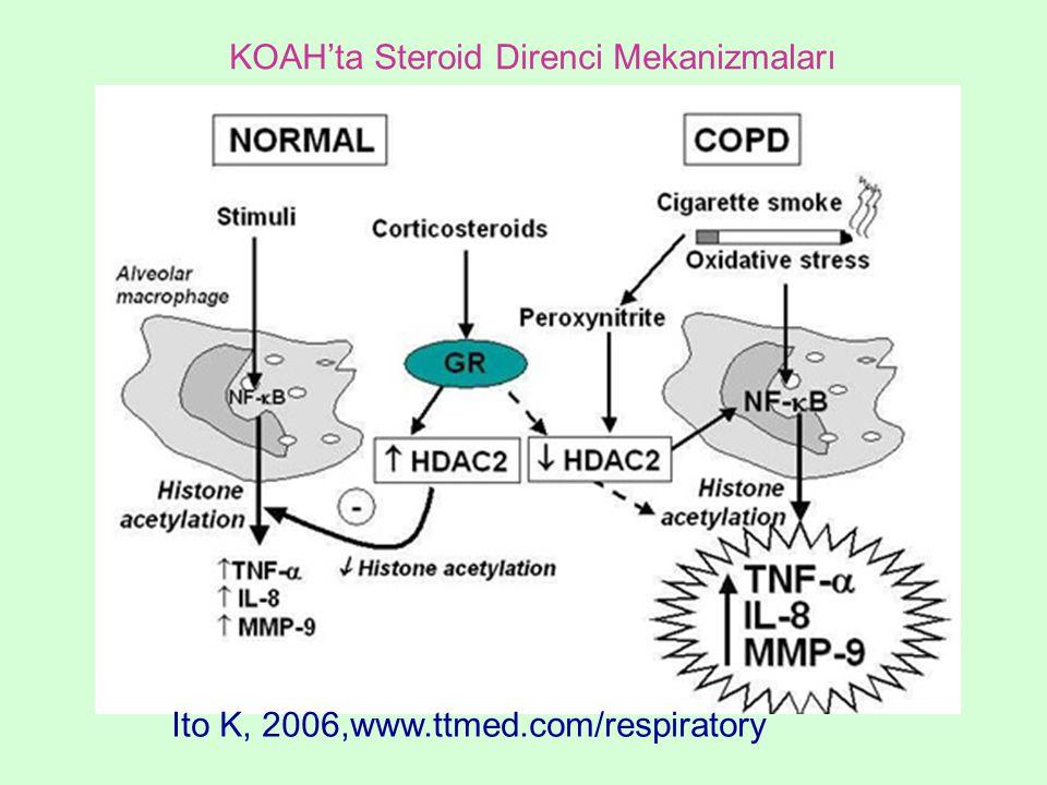 KOAH'ta Steroid Direnci Mekanizmaları Ito K, 2006,www.ttmed.com/respiratory