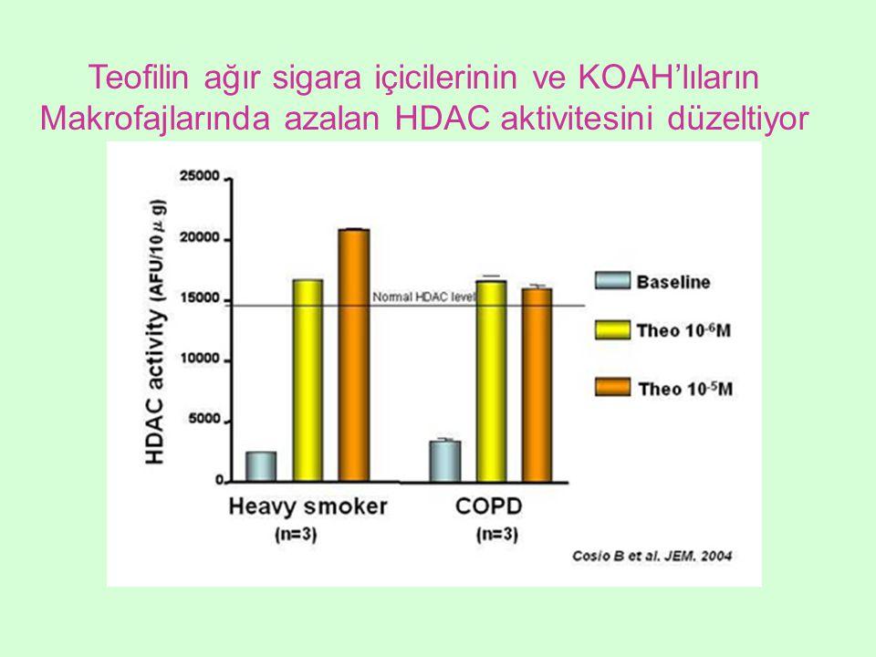 Teofilin ağır sigara içicilerinin ve KOAH'lıların Makrofajlarında azalan HDAC aktivitesini düzeltiyor