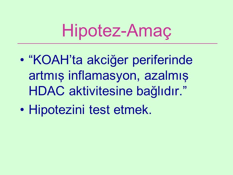 """Hipotez-Amaç """"KOAH'ta akciğer periferinde artmış inflamasyon, azalmış HDAC aktivitesine bağlıdır."""" Hipotezini test etmek."""