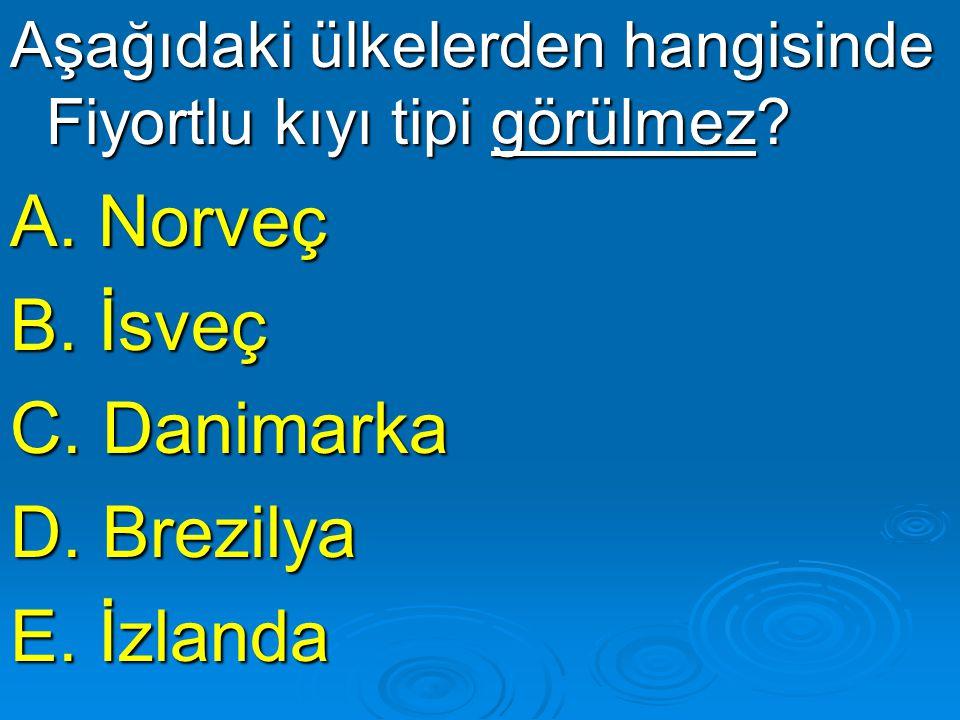 Aşağıdaki ülkelerden hangisinde Fiyortlu kıyı tipi görülmez? A. Norveç B. İsveç C. Danimarka D. Brezilya E. İzlanda