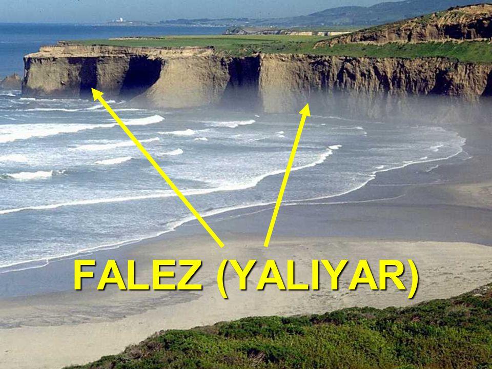 FALEZ (YALIYAR): Genelde dağların denize paralel uzandığı, Genelde dağların denize paralel uzandığı, Kıta sahanlığının dar olduğu, Kıta sahanlığının dar olduğu, Karadeniz ve Akdeniz kıyılarında görülür.