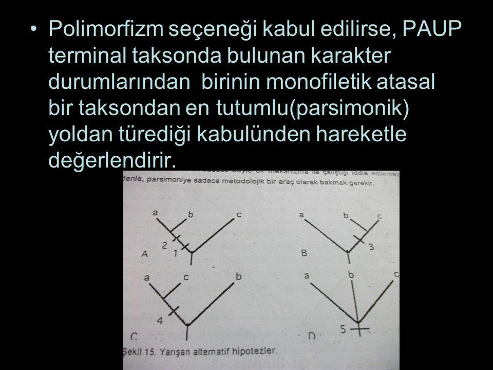 Polimorfizm seçeneği kabul edilirse, PAUP terminal taksonda bulunan karakter durumlarından birinin monofiletik atasal bir taksondan en tutumlu(parsimo