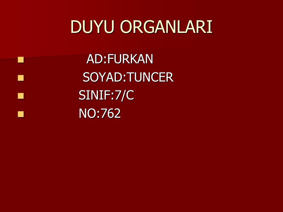 DUYU ORGANLARI AD:FURKAN AD:FURKAN SOYAD:TUNCER SOYAD:TUNCER SINIF:7/C SINIF:7/C NO:762 NO:762
