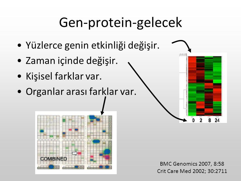 Gen-protein-gelecek Yüzlerce genin etkinliği değişir. Zaman içinde değişir. Kişisel farklar var. Organlar arası farklar var. BMC Genomics 2007, 8:58 C