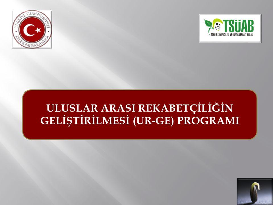 PROGRAM DAYANAĞI Ekonomi Bakanlığı'nın 2010/8 sayılı ''Uluslararası Rekabetçiliğin Geliştirilmesinin Desteklenmesi Hakkında Tebliğ'' PROGRAM AMACI Şirketlerin uluslar arası pazarlarda rekabet gücünü artırmaya yönelik eğitim danışmanlık giderleri ile işbirliği kuruluşlarının proje bazlı giderlerinin desteklenmesi UR-GE