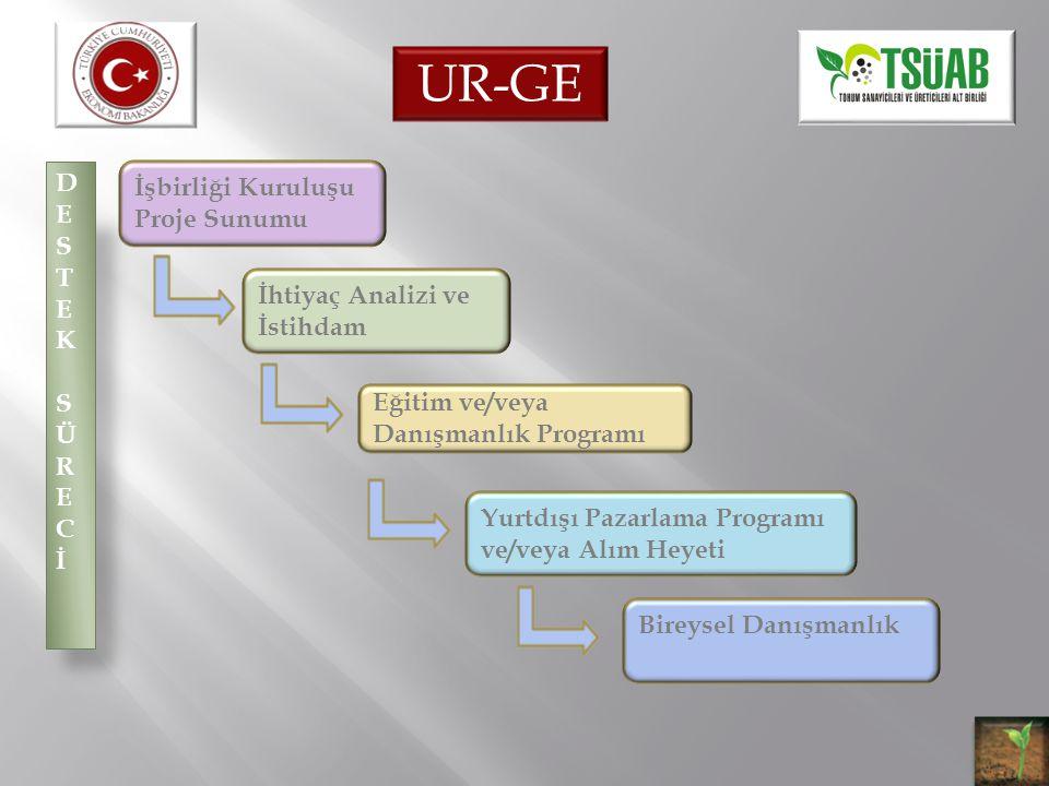 DESTEK SÜRECİDESTEK SÜRECİ İşbirliği Kuruluşu Proje Sunumu İhtiyaç Analizi ve İstihdam Eğitim ve/veya Danışmanlık Programı Yurtdışı Pazarlama Programı