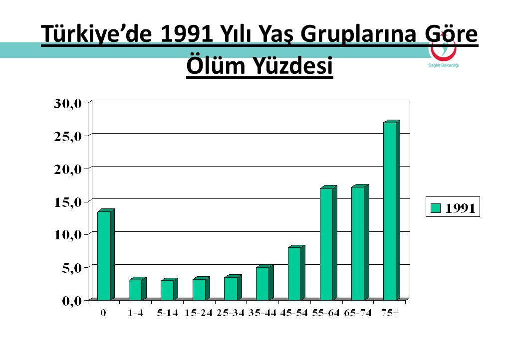 Türkiye'de 1991 Yılı Yaş Gruplarına Göre Ölüm Yüzdesi
