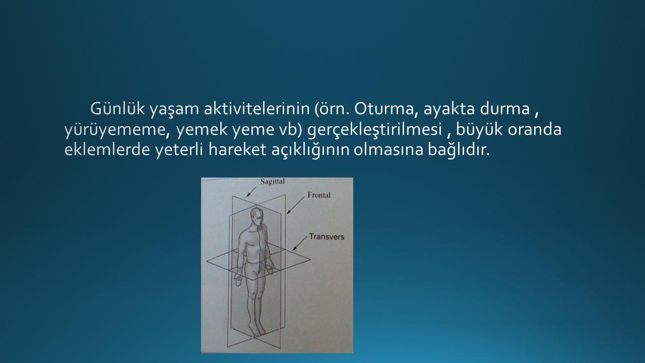 El bilek fleksiyonu(80°).