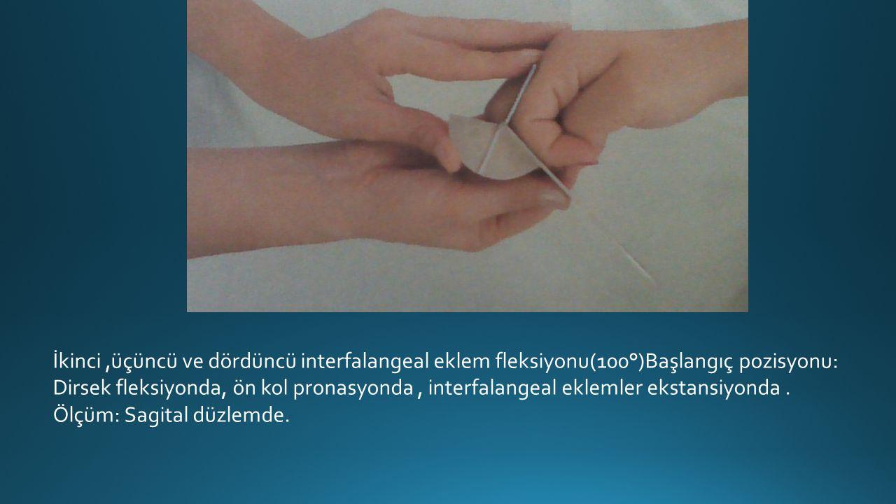 İkinci,üçüncü ve dördüncü interfalangeal eklem fleksiyonu(100°)Başlangıç pozisyonu: Dirsek fleksiyonda, ön kol pronasyonda, interfalangeal eklemler ekstansiyonda.
