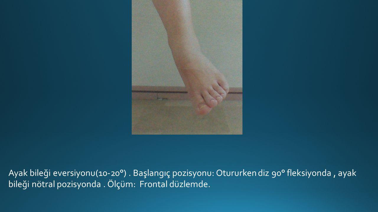 Ayak bileği eversiyonu(10-20°).