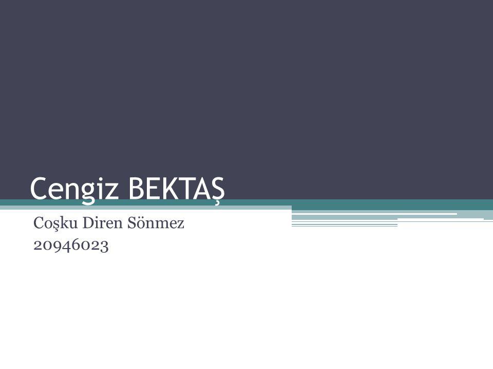Cengiz Bektaş Denizli, 1934 Mimar Sinan Güzel Sanatlar Üniversitesi Mimarlık ve İç Mimarlık bölümlerinde okudu.