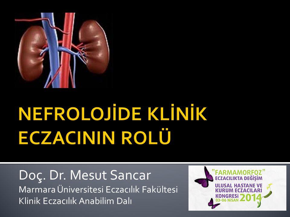 Doç. Dr. Mesut Sancar Marmara Üniversitesi Eczacılık Fakültesi Klinik Eczacılık Anabilim Dalı