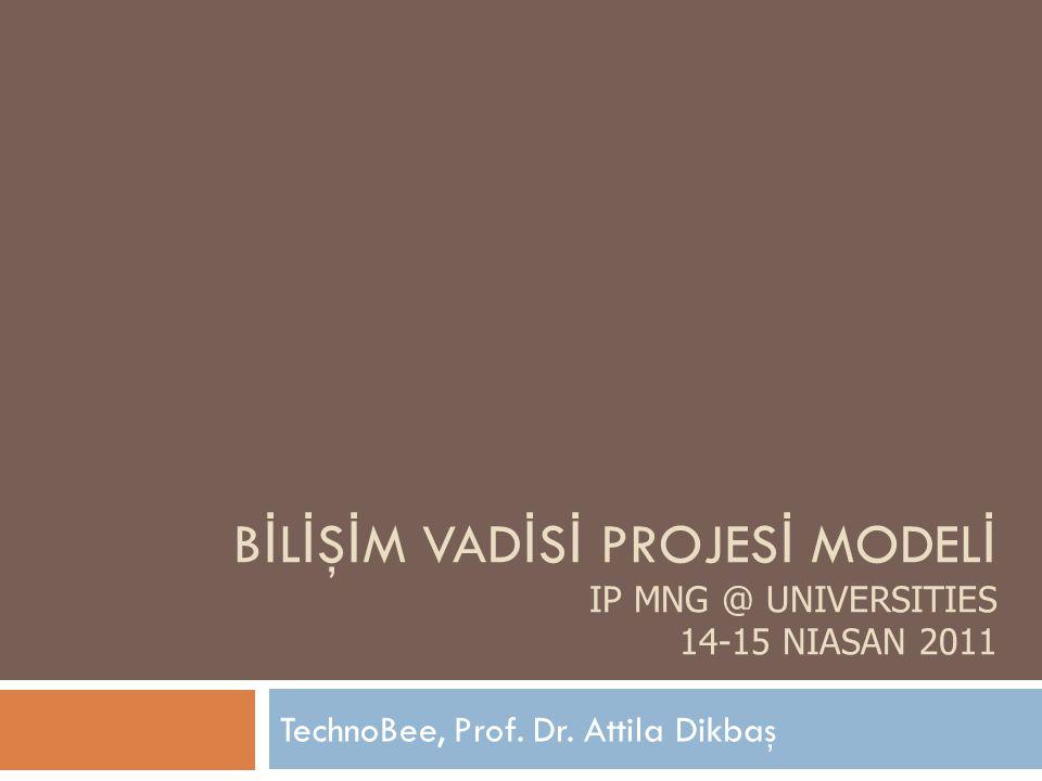B İ L İ Ş İ M VAD İ S İ PROJES İ MODEL İ IP MNG @ UNIVERSITIES 14-15 NIASAN 2011 TechnoBee, Prof.