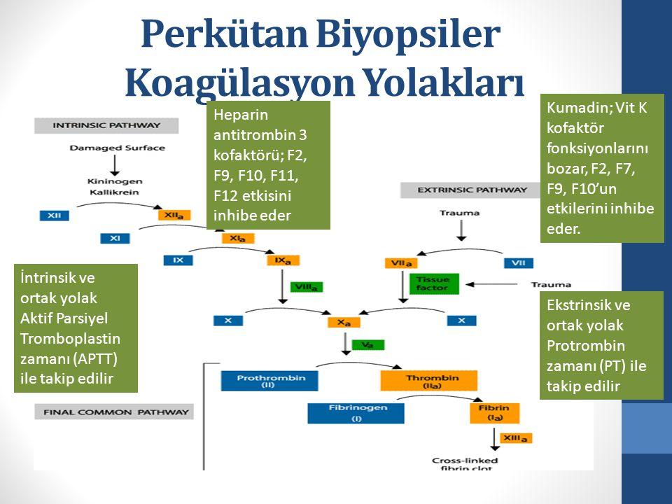Perkütan Biyopsiler Koagülasyon Yolakları Ekstrinsik ve ortak yolak Protrombin zamanı (PT) ile takip edilir İntrinsik ve ortak yolak Aktif Parsiyel Tromboplastin zamanı (APTT) ile takip edilir Heparin antitrombin 3 kofaktörü; F2, F9, F10, F11, F12 etkisini inhibe eder Kumadin; Vit K kofaktör fonksiyonlarını bozar, F2, F7, F9, F10'un etkilerini inhibe eder.