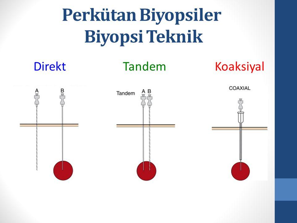 Perkütan Biyopsiler Biyopsi Teknik Direkt Tandem Koaksiyal