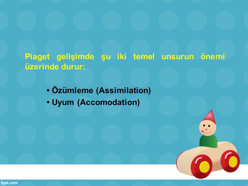 Piaget gelişimde şu iki temel unsurun önemi üzerinde durur: Özümleme (Assimilation) Uyum (Accomodation)