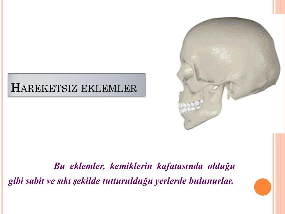 H AREKETSIZ EKLEMLER Bu eklemler, kemiklerin kafatasında olduğu gibi sabit ve sıkı şekilde tutturulduğu yerlerde bulunurlar.