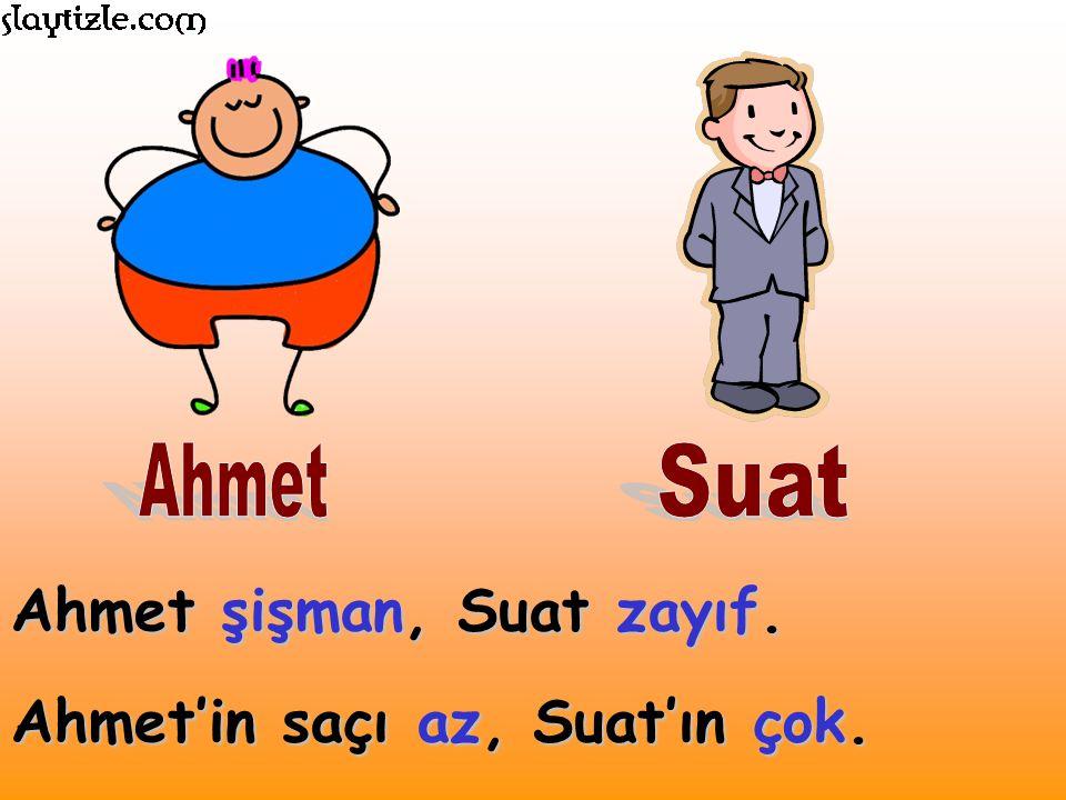 Ahmet şişman, Suat zayıf. Ahmet'in saçı az, Suat'ın çok.
